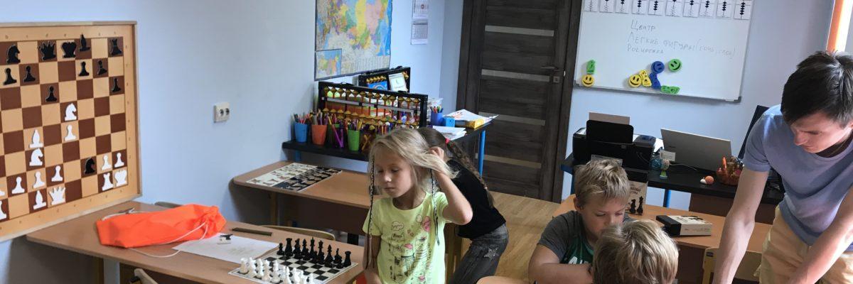 Занятия шахматами Московский